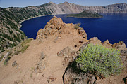 Crater Lake View Framed Prints - Wizard Island And Lake Shore, Mt Framed Print by Gerry Ellis