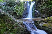 Wolf Creek Metal Prints - Wolf Creek Falls Metal Print by Alan Lenk