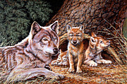 Timber Wolf Prints - Wolf Den Print by Richard De Wolfe