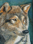 Grey Wolf Mixed Media Framed Prints - Wolf I Framed Print by Margo Wolfe