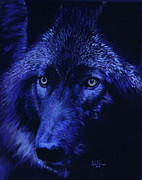 Wolf Artist Painting Posters - Wolf in moonlight  version B   Poster by John  Palmer
