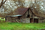 Old Barns Metal Prints - Wolfe City Barn Metal Print by Lisa Moore