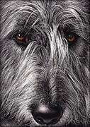 Elena Kolotusha Mixed Media Prints - Wolfhound Print by Elena Kolotusha