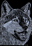 Hand Drawn Glass Art - Wolfie by Jim Ross