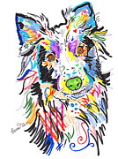 Andy Warhol Drawings - Wolfie by Rebecca Fischer