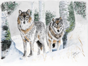 Wolves In Nature Prints - Wolves in the Birch Trees  Print by Joette Snyder