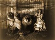 Woman Circus Performer Named Adjie Print by Everett