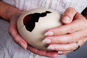 Misfortune Prints - Woman holding broken ostrich egg Print by Sami Sarkis