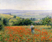 Flower Picker Framed Prints - Woman in a Poppy Field Framed Print by Leon Giran Max