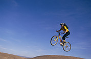Athletes Posters - Woman Jumping Into Air On Bike, Arizona Poster by David Edwards
