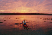 Woman Kayaking At Dusk, Penobscot Bay Print by Skip Brown