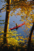 River Scenes Photos - Woman Kayaking With Fall Foliage by Skip Brown
