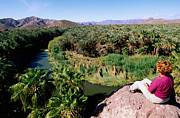 Baja California Sur Prints - Woman Looking Over Rio Mulege From Viewpoint, Mulege, Baja California Sur, Mexico, Central America & The Caribbean Print by John Elk III