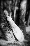 Monochrome Art - Woman On A Trunk by Joana Kruse
