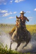 Woman Riding A Horse Print by Richard Wear