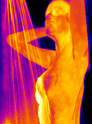 Showering Framed Prints - Woman Showering, Thermogram Framed Print by Tony Mcconnell