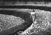 Flower Order Posters - Woman Walking On Flowerbed, (b&w) Poster by George Marks