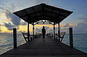 Silhouetted Posters - Woman walking on wooden jetty at sunrise Poster by Sami Sarkis