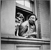 Window Sill Posters - Woman With Her Dog In Harlem, New York Poster by Everett