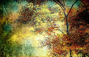Abstract Impressionism Photo Prints - Wondering Print by Bob Orsillo