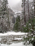 Yosemite Falls Metal Prints - Wonderland Yosemite Metal Print by Heidi Smith