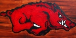 Arkansas Razorbacks Metal Prints - Woo Pig Sooie Metal Print by Laura  Grisham
