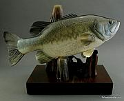 Largemouth Bass Sculptures - Wood Carving Largemouth Bass by Chad Turner
