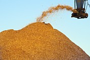 Machine Photos - Wood Chip Production by David Nunuk