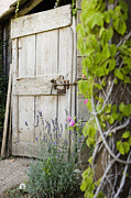 Wooden Building Framed Prints - Wood Door and Garden Framed Print by Andersen Ross