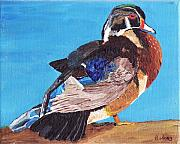 Ducks Paintings - Wood Duck by Rodney Campbell