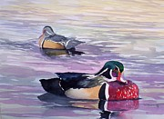 Ducks Paintings - Wood ducks by Richard Willows