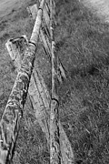Postkarte Art - Wood Fence by Markus Wegner