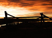 Fort Collins Metal Prints - Wood Fence Sunrise Metal Print by Sara  Mayer