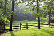 Grassland Photo Posters - Wood Fence Poster by Tony Cordoza