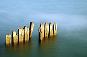 In A Row Art - Wood In Sea by ICT_Photo