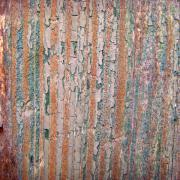 Wood No 5 Print by Renata Vogl