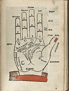 Fortune Telling Prints - Woodcut Of A Hand With Palmist Markings Print by Everett
