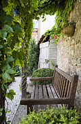 Wood Bench Posters - Wooden Bench in Garden Poster by Andersen Ross