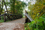 Fort Wayne Framed Prints - Wooden Bridge in Fall Framed Print by Mauricio Fernandez