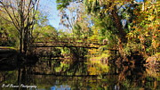 Florida Waterscape Originals - Wooden Bridge over the Hillsborough River by Barbara Bowen