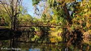 Barbara Bowen - Wooden Bridge over the Hillsborough River