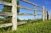 Wooden Fence Prints - Wooden Fence Blue Sky Print by Thomas R Fletcher
