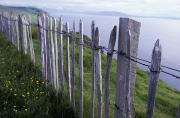 Outer Hebrides Framed Prints - Wooden Fence On Hillside By Sea Framed Print by Axiom Photographic