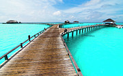 Maldives Framed Prints - Wooden Jetty Framed Print by Luismaxx