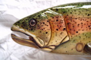 Living Waters Reliefs - Wooden Rainbow Trout number five close up by Lisa Ruggiero