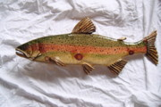 Aquatic Life Reliefs - Wooden Rainbow Trout number five by Lisa Ruggiero