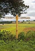 Signpost Prints - Wooden Signpost in Countryside Print by Jon Boyes