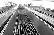 Escalator Metal Prints - Wooden stairs in Sydney Metal Print by Jessica Rose