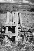 Dry Stone Wall Art - Wooden Style Across A Dry Stone Wall In A Field In Rural Ireland by Joe Fox