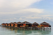 Tourist Resort Posters - Wooden water bungalows Poster by Sami Sarkis